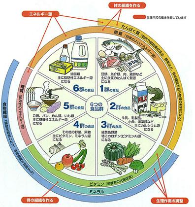 六大栄養素って何?